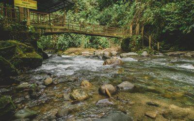Mindo, um povoado em meio à natureza